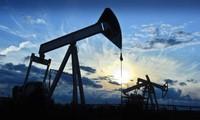 Saudi, Iran dash hopes for OPEC oil deal