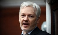 WikiLeaks founder to be interviewed