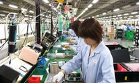 Vietnam's electronics industry urged to find remedies