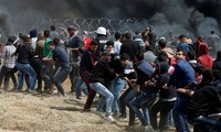 Gaza conflicts injure 240