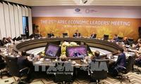 АТЭС 2017 способствует повышению позиций Вьетнама на международной арене