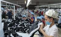 В торговых отношениях между Вьетнамом и Чехией наблюдаются позитивные признаки