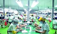 Профсоюзы Вьетнама обновляют свою деятельность после вступления страны в ВПСТТП
