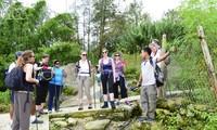 Туризм по-прежнему остается движущей силой глобального экономического развития