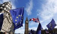 Европарламент не исключил перенос сроков Brexit