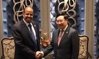 Вице-премьер, глава МИД СРВ встретился с министром иностранных дел Джибути
