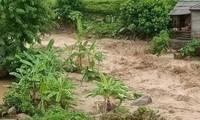 Особое внимание уделяется поиску пропавших без вести из-за тайфуна