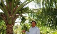 Ông Đỗ Hiếu Liêm - Tấm gương nông dân sản xuất giỏi ở tỉnh Tiền Giang