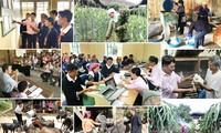 Việt Nam giảm nghèo bền vững, thực hiện Mục tiêu thiên niên kỷ
