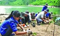 Việt Nam cùng cộng đồng quốc tế chống biến đổi khí hậu năm 2016