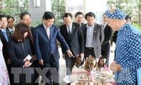 Xúc tiến hợp tác và đầu tư giữa vùng Kansai (Nhật Bản) và Thành phố Hồ Chí Minh