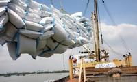 Xuất khẩu gạo của Việt Nam có nhiều tín hiệu khả quan