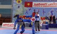 Chung kết Giải Cúp Đại sứ Vovinam Việt Võ Đạo lần 3 - 2017 tại Algeria