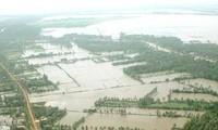 Hợp tác quản lý nước vùng Tứ giác Long Xuyên