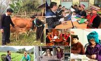 Thực hiện đồng bộ, hiệu quả chính sách cho vùng dân tộc, miền núi