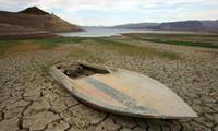 APPF 26: Tăng cường hành động chung nhằm ứng phó với Biến đổi khí hậu