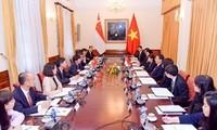 Họp Tham khảo Chính trị Việt Nam – Singapore lần thứ 11