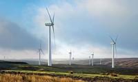 Cơ hội phát triển điện gió tại Việt Nam