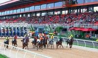 Hà Nội sắp có trường đua ngựa kinh doanh đặt cược và chuẩn bị hoàn thành chặng đua xe F1