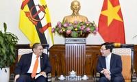 Việt Nam và Brunei thúc đẩy hợp tác song phương trên nhiều lĩnh vực