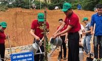 Tăng cường quản lý chống sa mạc hóa và suy thoái đất ở Việt Nam