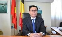 """Đại sứ Việt Nam tại EU: """"EVFTA có thể chính thức có hiệu lực đầu 2020"""""""