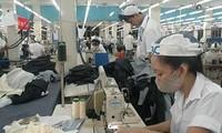 Ban-badan usaha kota Ho Chi Minh mempromosikan  investasi ke Federasi Rusia