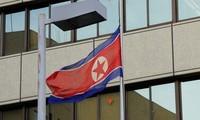 RDR Korea membantah rekomendasi perundingan nuklir