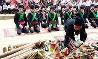 Hari Raya Ngo yang khusus dari warga etnis minoritas Cong