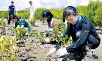 Vietnam berinisiastif dan aktif melaksanakan komitmen-komitmen internasional tentang perubahan iklim