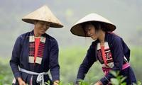 Busana tradisional yang khas dari perempuan etnis minoritas Cao Lan di Provinsi Bac Giang