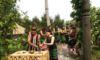 Upacara menyedekahi pintu gerbang  desa dari warga etnis minoritas M'nong