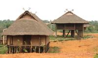 The black Thai's houses on stilts