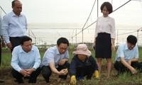 Deputy PM Vu Duc Dam works in Bac Ninh on food safety, hygiene