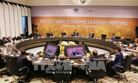 APEC 2017 helps elevate Vietnam's global status