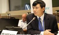 Vietnam actively participates in UN forums: Ambassador