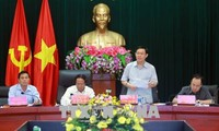 Deputy PM works with Hai Phong on improving FDI attraction