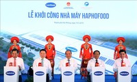 Prime Minister works with Hai Phong's key leaders