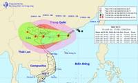 """越南各地积极开展应对台风""""电母""""方案"""