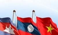 越南国会主席阮氏金银的柬埔寨之行将深化两国睦邻关系