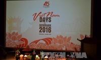 越南-丹麦建交45周年纪念仪式在胡市举行