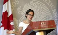 将越南和加拿大合作关系提升至新水平