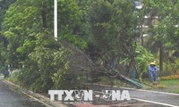 越南慰问遭受台风山神影响的中国灾民
