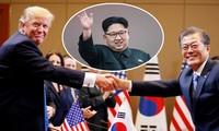 韩美国致同意就朝鲜问题配合行动