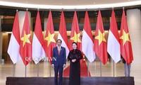 越南国会主席阮氏金银会见印度尼西亚总统佐科