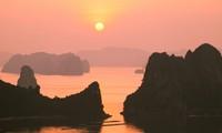 越南有关方面举行多项活动推介旅游目的地品牌