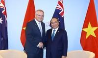 越南政府总理阮春福在澳大利亚总理莫里森在第33届东盟峰会期间举行会晤
