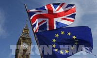 英国政府通过英脱欧协议草案