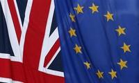 英国脱欧:欧盟确定英脱欧峰会日期