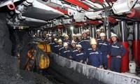 越南政府副总理郑廷勇:越南煤炭矿产工业集团要保障经济对煤炭的需求